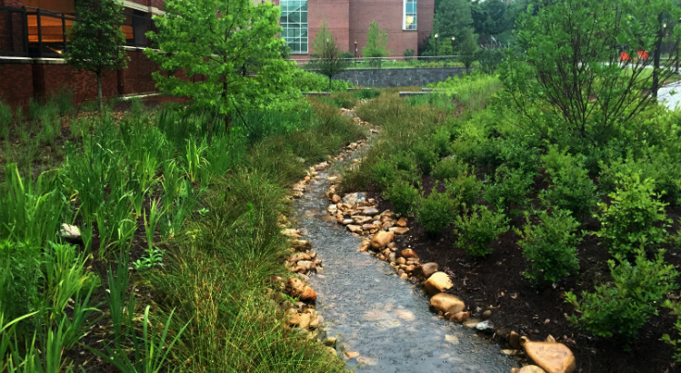 Eco-commons, stormwater, Georgia Tech